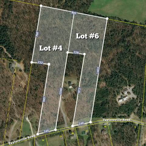 731 Taylorsville Road, Lebanon, TN 37087 (MLS #RTC2132705) :: Village Real Estate