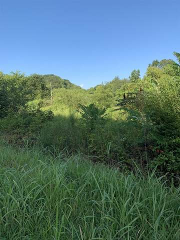 1 Hulsey Branch Rd, Minor Hill, TN 38473 (MLS #RTC2132837) :: Stormberg Real Estate Group