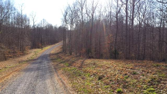 0 Carter Lane, Franklin, TN 37064 (MLS #RTC2133629) :: Stormberg Real Estate Group