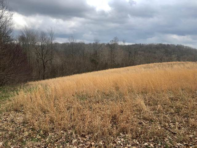 0 Nels Adams Rd, Dickson, TN 37055 (MLS #RTC2133946) :: The Helton Real Estate Group