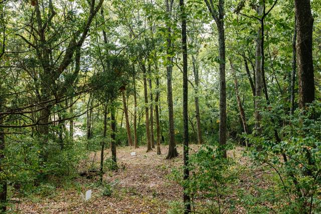 1741 Woodsong Dr (Lot #33), Brentwood, TN 37027 (MLS #RTC2134801) :: HALO Realty
