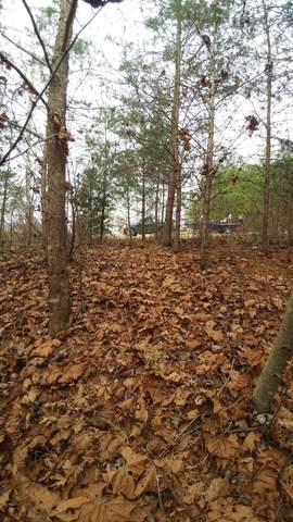 0 Christie Cir Lot #7, Cookeville, TN 38501 (MLS #RTC2135118) :: Village Real Estate