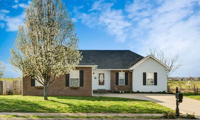 980 Chardea Ct, Clarksville, TN 37040 (MLS #RTC2135225) :: Oak Street Group