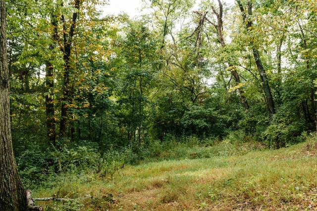1601 Windy Ridge Dr (Lot #25), Brentwood, TN 37027 (MLS #RTC2135261) :: HALO Realty