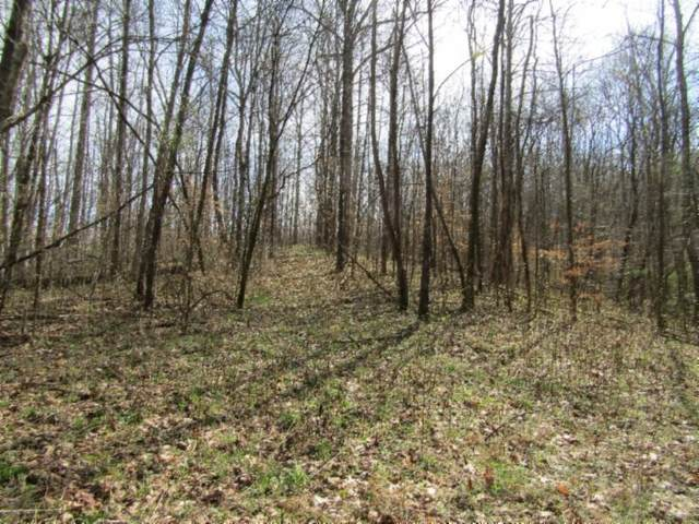 0 Mud Hollow Rd, Hendersonville, TN 37075 (MLS #RTC2135608) :: DeSelms Real Estate