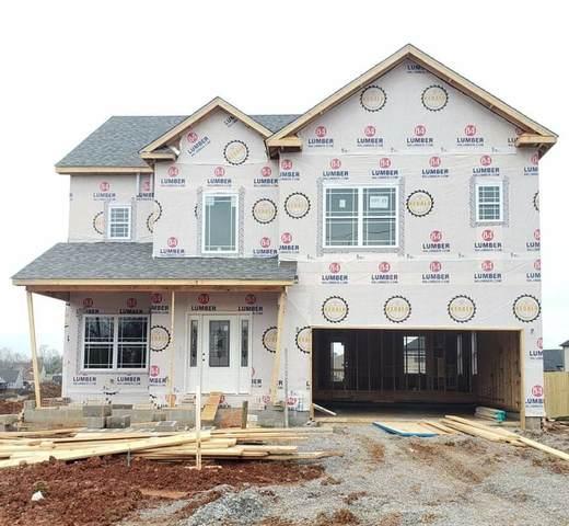 1035 Harrison Way, Clarksville, TN 37042 (MLS #RTC2136028) :: Oak Street Group