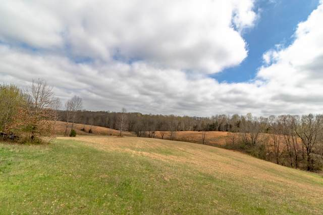 3601 Old Highway 48, Clarksville, TN 37040 (MLS #RTC2136578) :: The Helton Real Estate Group