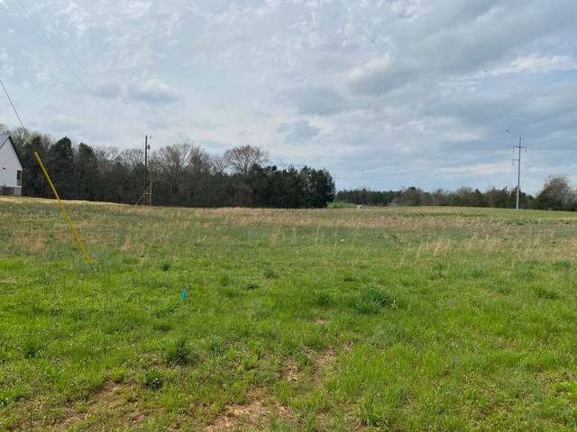 135 Osteen Ln, Chapel Hill, TN 37034 (MLS #RTC2136624) :: Village Real Estate