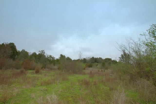 0 Monsanto Rd, Columbia, TN 38401 (MLS #RTC2136960) :: Village Real Estate