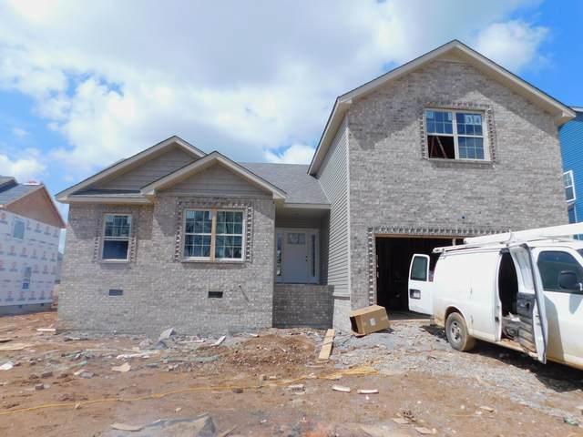 1180 Elizabeth Lane, Clarksville, TN 37042 (MLS #RTC2137055) :: DeSelms Real Estate