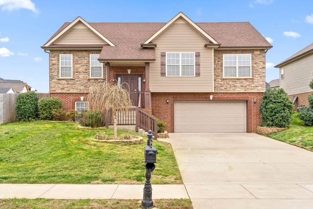 1294 Snowball Ln, Clarksville, TN 37042 (MLS #RTC2137320) :: Cory Real Estate Services