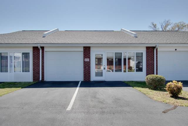230 Franklin Terrace, Lebanon, TN 37087 (MLS #RTC2137880) :: Berkshire Hathaway HomeServices Woodmont Realty