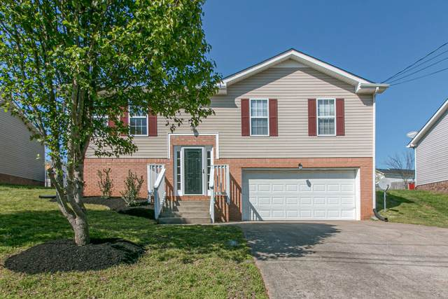 259 Audrea Ln, Clarksville, TN 37042 (MLS #RTC2137898) :: John Jones Real Estate LLC