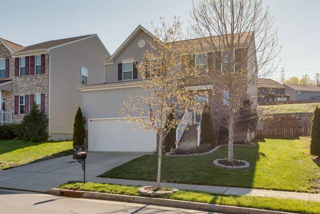 548 Wolfeboro Ln, Nashville, TN 37221 (MLS #RTC2138289) :: Ashley Claire Real Estate - Benchmark Realty