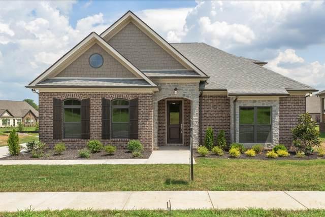 3211 Rift Ln, Murfreesboro, TN 37130 (MLS #RTC2139090) :: Benchmark Realty
