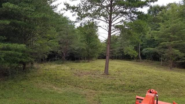0 Wall Ln, Waverly, TN 37185 (MLS #RTC2142154) :: Village Real Estate