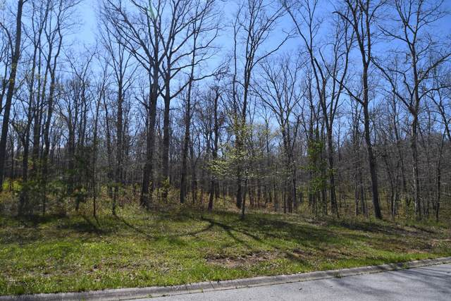 419 Riverchase Drive, Crossville, TN 38571 (MLS #RTC2144470) :: PARKS