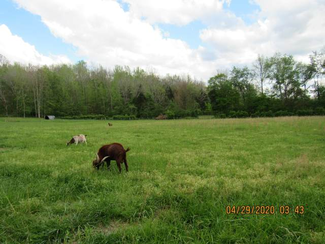 0 Judy Branch Rd, Mc Ewen, TN 37101 (MLS #RTC2145081) :: DeSelms Real Estate