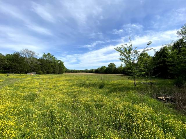 0 Stovall Rd, Pulaski, TN 38478 (MLS #RTC2146487) :: Felts Partners
