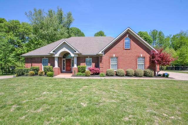 119 Millstone Way, White House, TN 37188 (MLS #RTC2146519) :: The DANIEL Team | Reliant Realty ERA