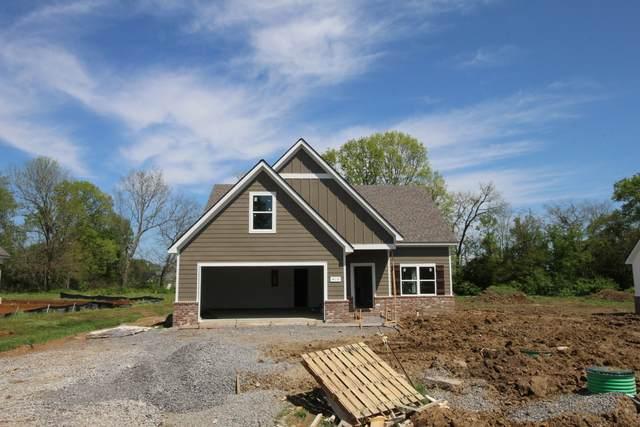 419 Skipping Stone Rd, Christiana, TN 37037 (MLS #RTC2147701) :: Team George Weeks Real Estate