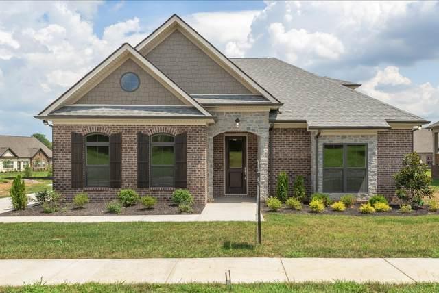 3211 Rift Ln, Murfreesboro, TN 37130 (MLS #RTC2148056) :: Stormberg Real Estate Group