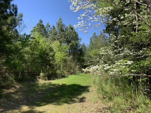 0 Buena Vista Road, Buena Vista, TN 38318 (MLS #RTC2148595) :: Village Real Estate