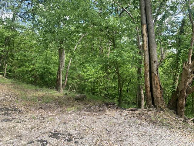 140 Tranquility Way, Smithville, TN 37166 (MLS #RTC2148919) :: Village Real Estate