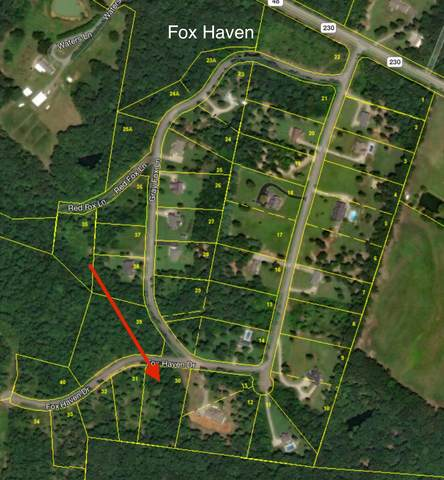 0 Fox Haven Dr, Nunnelly, TN 37137 (MLS #RTC2148984) :: Maples Realty and Auction Co.