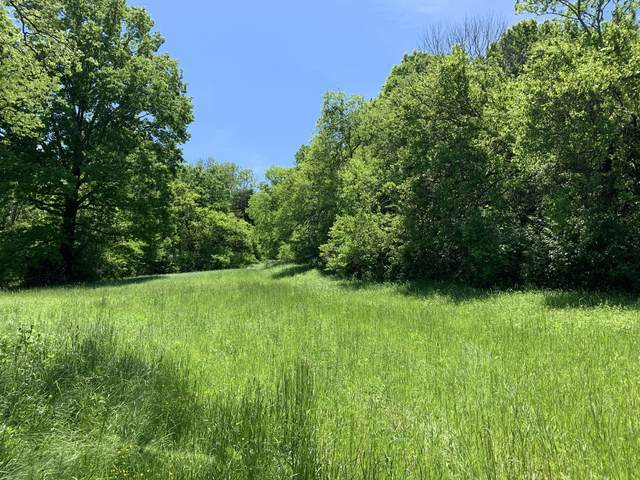 0 Blue Creek Rd, Lynnville, TN 38472 (MLS #RTC2149149) :: Benchmark Realty