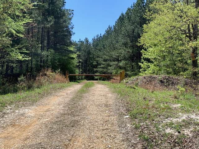 0 Lick Creek Road, Dover, TN 37058 (MLS #RTC2150042) :: Armstrong Real Estate