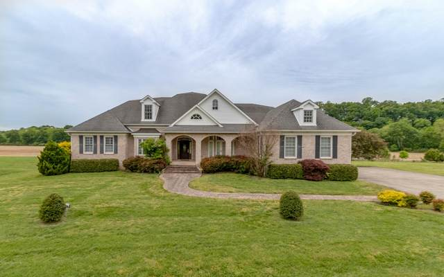 563 Pond Apple Road, Clarksville, TN 37043 (MLS #RTC2150286) :: CityLiving Group