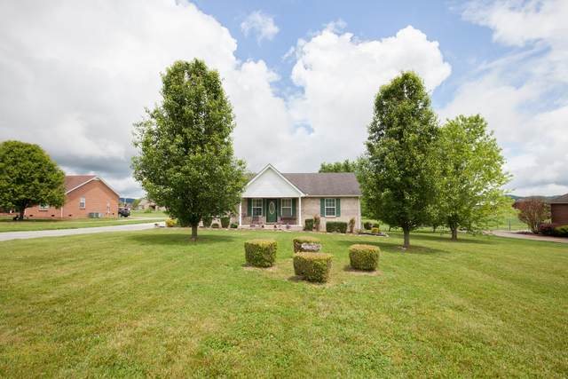 1067 Pinnacle Way, Castalian Springs, TN 37031 (MLS #RTC2150479) :: Felts Partners