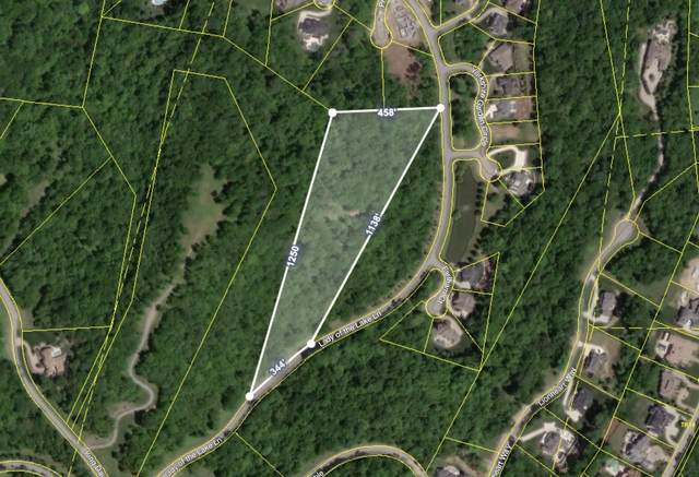 331 Lady Of The Lake Lane, Franklin, TN 37067 (MLS #RTC2150583) :: Village Real Estate
