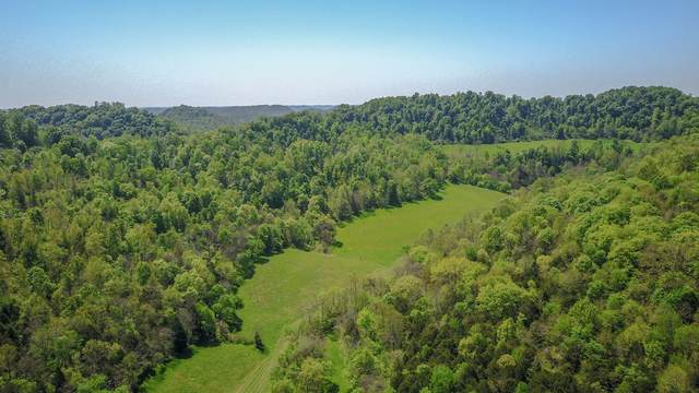 453 Herring Hollow Ln, Gainesboro, TN 38562 (MLS #RTC2151090) :: Village Real Estate