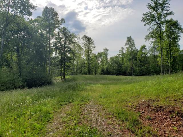 0 Standing Stone Park Hwy, Hilham, TN 38568 (MLS #RTC2151382) :: RE/MAX Homes And Estates