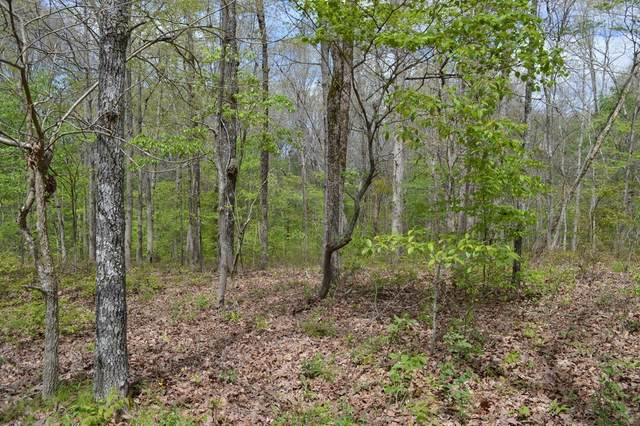 0 Peters Rd, Hohenwald, TN 38462 (MLS #RTC2151448) :: Michelle Strong