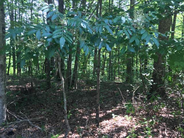 4 Ridgecliff Dr, Monteagle, TN 37356 (MLS #RTC2151938) :: The Adams Group