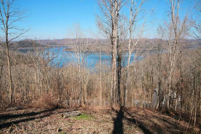 672 Williamson Cir, Smithville, TN 37166 (MLS #RTC2151943) :: The Helton Real Estate Group