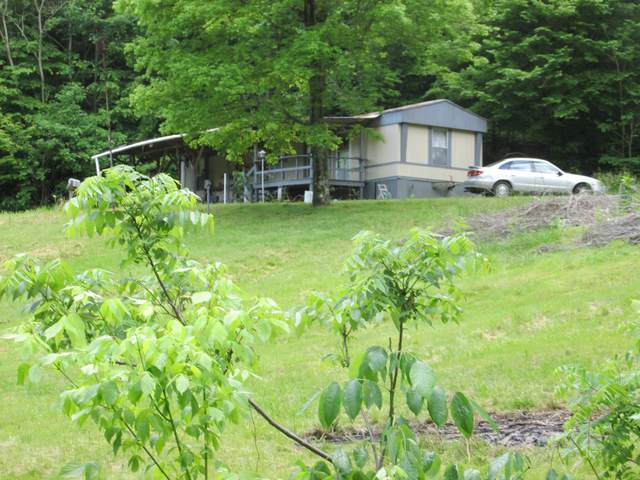 1100 Muckle Branch Road, Ethridge, TN 38456 (MLS #RTC2152230) :: The Group Campbell powered by Five Doors Network