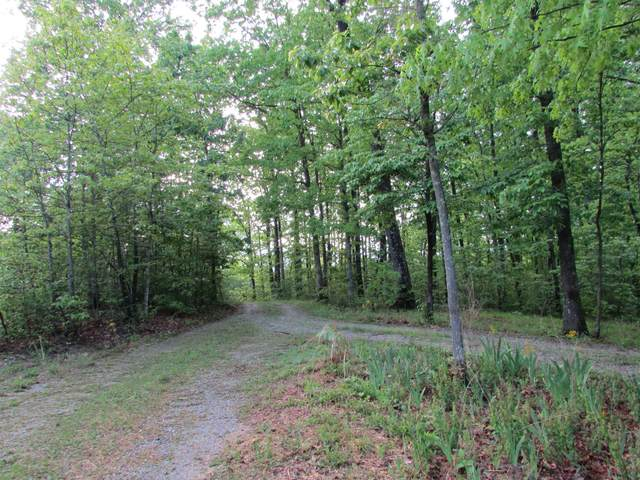 2213 Deer Run Rd, Altamont, TN 37301 (MLS #RTC2152721) :: RE/MAX Homes And Estates
