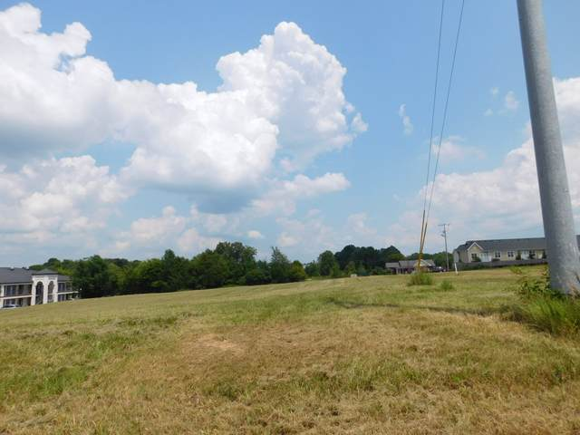 105 Maiden Ln, White House, TN 37188 (MLS #RTC2153323) :: DeSelms Real Estate