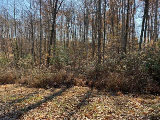 0 Laurel Hills Drive Lot 25, Dickson, TN 37055 (MLS #RTC2153638) :: Village Real Estate