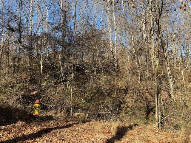 0 Doy Road Lot 5, White Bluff, TN 37187 (MLS #RTC2153641) :: Village Real Estate