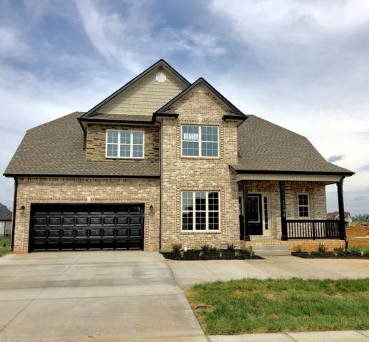 213 Penelope Drive, Clarksville, TN 37043 (MLS #RTC2153900) :: Cory Real Estate Services