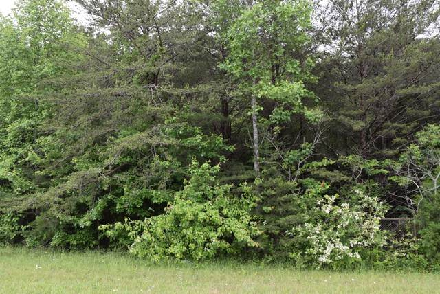 0 Wells St., Monteagle, TN 37356 (MLS #RTC2154216) :: FYKES Realty Group