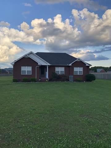 1006 Peak Dr, Castalian Springs, TN 37031 (MLS #RTC2154348) :: Village Real Estate