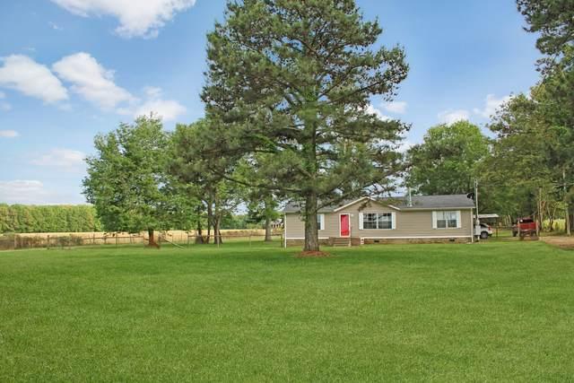 946 Mcmahan Rd, Bradyville, TN 37026 (MLS #RTC2154633) :: Village Real Estate