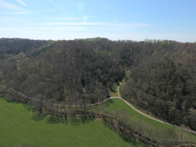 122 Jim Hollow Rd, Woodbury, TN 37190 (MLS #RTC2154927) :: Village Real Estate