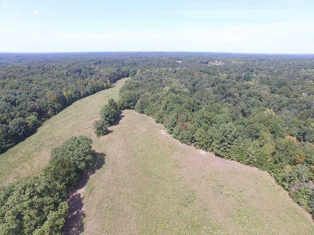 971 Robertson Rd - Tract 6A, Mc Ewen, TN 37101 (MLS #RTC2154978) :: Village Real Estate